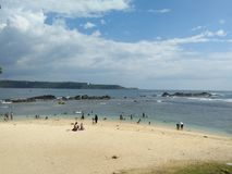 Fotos hermosas de la naturaleza del lado de la playa del sri lankan Imágenes de archivo libres de regalías