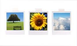 Fotos polaroid Fotos de archivo libres de regalías