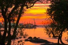 Fotos retroiluminadas no por do sol Imagens de Stock Royalty Free