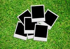 Fotos vazias na grama verde Imagens de Stock