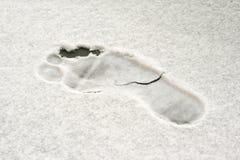 Fotprint en nieve Fotos de archivo