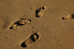 fotspår Royaltyfri Fotografi