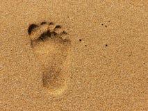 fotspår Royaltyfri Foto
