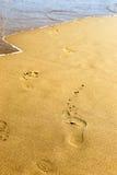 fotspår Arkivbild