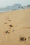 fotspår Royaltyfria Foton