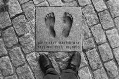 Fotspår av den baltiska vägen i Tallinn, Estland Arkivbild