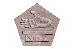 Fotspår av en gorilla namngav Nigra arkivfoton
