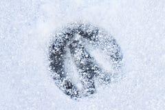 Fotspår av en häst Fotografering för Bildbyråer