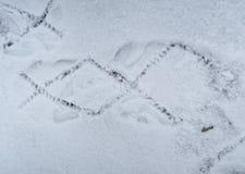 Fotspår av spårningkängor på snö Arkivfoto