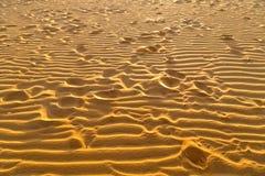 Fotspår deserterar sand Dyn landskap på soluppgång arkivbilder