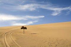 Fotspår för sanddyn och bil Royaltyfria Bilder