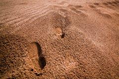 Fotspår i öknen Arkivbilder