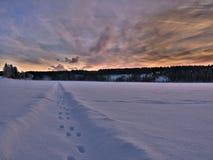 Fotspår i ett vinterlandskap Royaltyfri Bild