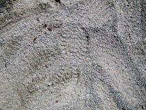 Fotspår i grusnärbild Royaltyfri Fotografi