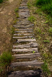 Fotspår i natur Fotografering för Bildbyråer
