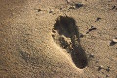 Fotspår i sand Royaltyfria Bilder