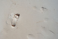 Fotspår i sand Arkivfoto