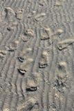 Fotspår i Sand på stranden Royaltyfri Bild