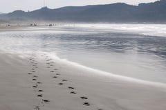 Fotspår i sanden Royaltyfria Foton