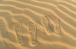 Fotspår i sanden av den stora indiska öknen Arkivfoton