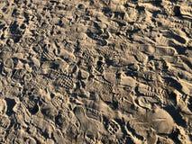 Fotspår i sanden av stranden royaltyfria foton