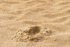 Fotspår i sanden makrofotoslut upp från över fotografering för bildbyråer