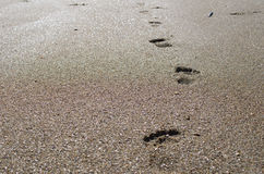 Fotspår i sanden på solnedgången Arkivbilder