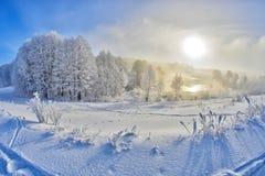 Fotspår i snö sjön Arkivfoton