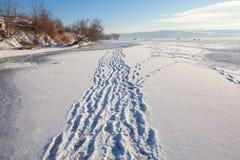 Fotspår i snow Arkivbild