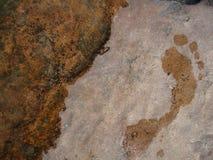 Fotspår i sten Fotografering för Bildbyråer