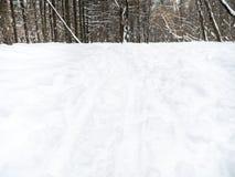 Fotspår och att skida spår på snowfield i vinter arkivbild