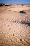 Fotspår på ökensanden arkivfoto