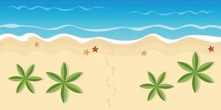 Fotspår på den ensamma stranden med palmträd och sjöstjärnan royaltyfri illustrationer