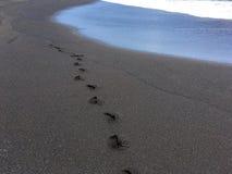 Fotspår på den svarta sanden royaltyfria foton