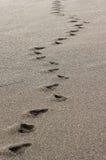 Fotspår på Pebblet Beach Arkivfoto
