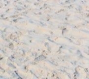 Fotspår på sanden Fotografering för Bildbyråer