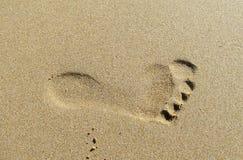 Fotspår på sanden royaltyfria bilder