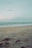 Fotspår på sanden royaltyfria foton