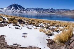 Fotspår på snö med den bergbuskar och sjön arkivbild