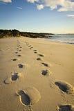 Fotspår på stranden Arkivfoton