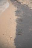 Fotspår på svartvitt blöter sand Olchon ö, Lake Baikal Arkivbilder