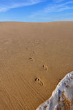 Fotspår som går ut ur hav Royaltyfri Bild
