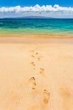 Fotspår som leder till paradiset arkivfoto