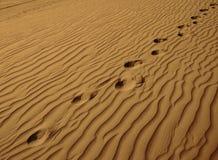 fotspårhorisontalensam sand Royaltyfri Foto