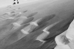 Fotspårteckning sanddyn, fotbana på Sahara Desert Modeller i sand Monochromatic svartvitt Marocko Afrika royaltyfria bilder