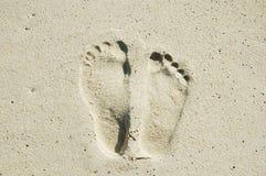fotspårvän arkivfoto