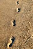 Fotspår i strandsanden Arkivfoto