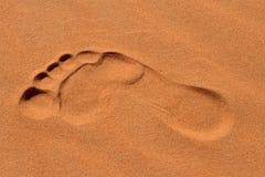 Fotsteg i Sahara fotografering för bildbyråer
