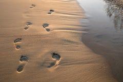 Fotsteg i sand på solnedgången Härlig sandig tropisk strand med fotspår på kusten arkivbild