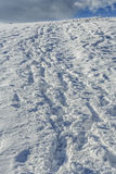 Fotsteg i snowen Royaltyfri Bild